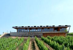 Sonberk a.s., vinařský dům Popice